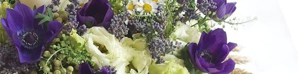 botez cu anemone albastre _ yau events _ yau concept _ elena toader