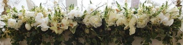 codrul cu flori albe yau events 2016 elenatoader zeze