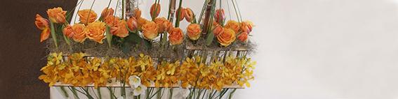 yau evenimente+yau flori+orange+lansare produs la hotel ramada
