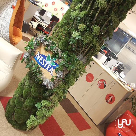 yau events 2015 - codrul verde de la nestea
