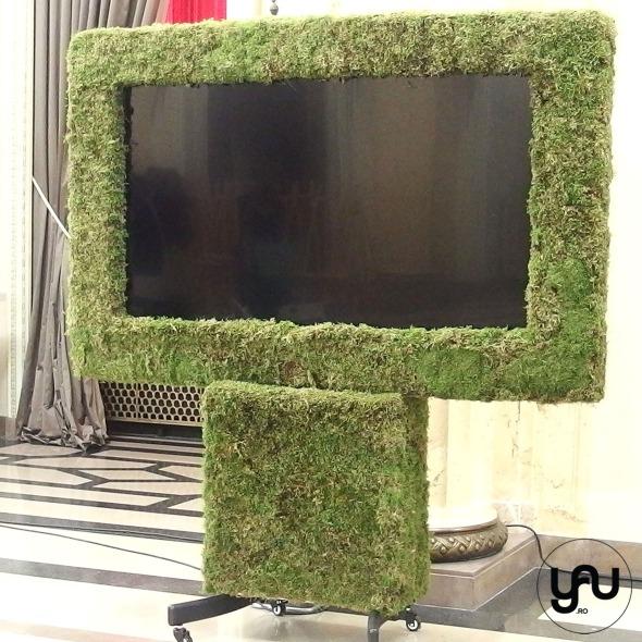 muschi-verde-_-plasme-inverzite-_-cocacola-roamania-_-yau-evenimente-2016-_-elenatoader-1